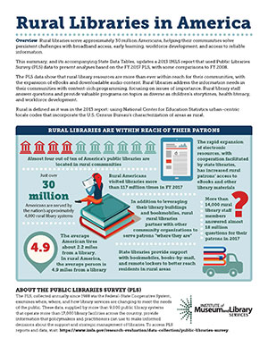 New infographics provide a snapshot of the nation's approximately 4,000 small and rural library systems