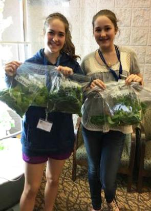 Teen volunteers package fresh produce