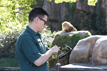 A wildlife professional collecting data using ZooMonitor