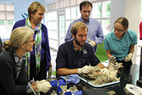 Collections Assessment for Preservation (CAP)