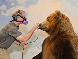 Photo of a man airbrush painting the face of a bear mannequin