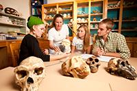 Museum Assessment Program