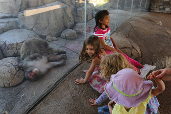 April 2018 Project Profile young visitors at macaques exhibit