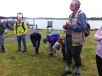 "Volunteers gather at a ""Stewardship Saturday"" project on Grape Island, in the Boston Harbor Islands."